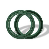 ATHENA P40FORK455054 - cальники вилки (41X54X11) (55-119)