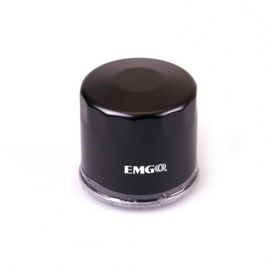 EMGO 10-55660 - масляный фильтр (аналог HF-138)