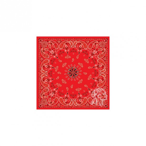 Бандана ZAN Red Paisley