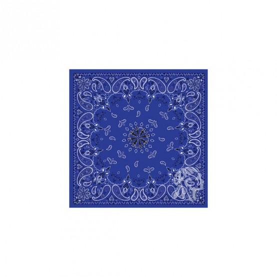 ZAN B002 - бандана Blue Paisley