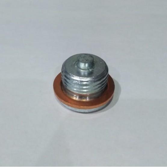 BERNING магнитная маслянная пробка 24х2 (BMW F650/F800/G650)